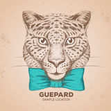 Hipster animal guepard. Hand drawing Muzzle of guepard Royalty Free Stock Photo