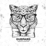 Hipster animal guepard. Hand drawing Muzzle of guepard Stock Photos