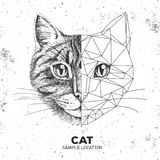 Hipster animal realistic and polygonal cat face. Triangle animal Royalty Free Stock Photo