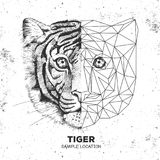 Hipster animal realistic and polygonal tiger face. Triangle animals Stock Photography
