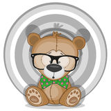 Hipster Bear Stock Photography
