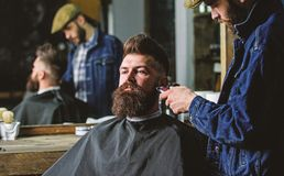 Hipster with beard covered with cape trimming by professional barber in stylish barbershop. Grooming concept. Barber stock photo