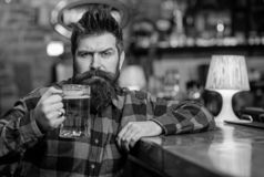 Hipster with beard holds glass with beer, raising up, cheers. Cheers concept. Guy spend leisure in bar, defocused. Background. Man on calm or serious face sit stock photos