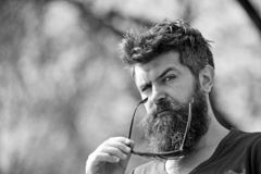 Hipster with beard and mustache on strict face, nature background, defocused. Man with beard looks stylish and confident. On sunny day. Fashion and style royalty free stock image