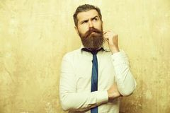 Hipster or bearded man with long beard on thoughtful face stock image