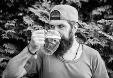 Hipster brutal bearded man hold mug cold fresh beer. Alcohol drink and bar. Craft beer is young, urban and fashionable. Beer and ale concept. Man relaxing stock photos