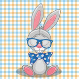 Hipster Bunny Stock Photography