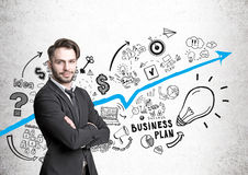 Hipster businessman and business plan icons Stock Images