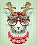 Hipster cat dressed in red glasses and deer horns hat and red knitted sweater, new year card royalty free illustration