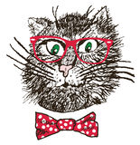 Hipster Cat (vector) Stock Photo