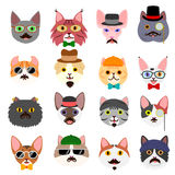 Hipster cats faces set Stock Image