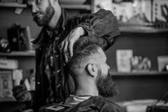 Hipster client with fresh haircut or hairstyle. Barber styling hair of bearded client with wax by hands. Man with beard royalty free stock image