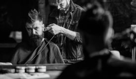 Hipster client getting haircut. Barber with clipper trimming hair on nape of client. Hipster hairstyle concept. Barber. With hair clipper works on haircut of royalty free stock photos