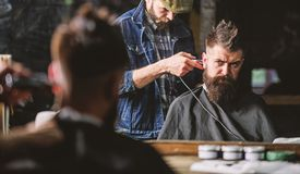 Hipster client getting haircut. Barber with clipper trimming hair on nape of client. Hipster hairstyle concept. Barber royalty free stock photo