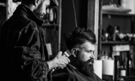Hipster client getting haircut. Barber with hair clipper works on haircut of bearded guy, retro barbershop background. Barber with clipper trimming hair on stock photo