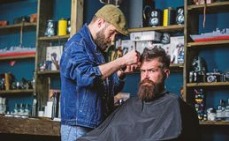 Hipster client getting haircut. Barber with hair clipper works on hairstyle for bearded man barbershop background. Hipster client getting haircut. Barber with royalty free stock photography