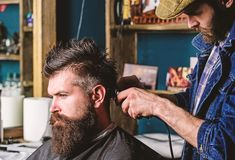 Hipster client getting haircut. Barber with hair clipper works on hairstyle for man with beard, barbershop background. Hipster client getting haircut. Barber royalty free stock photos