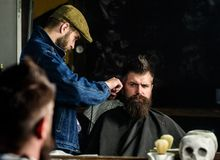 Hipster client getting haircut. Barber with hair clipper works on hairstyle for man with beard, barbershop background. Hipster client getting haircut. Barber royalty free stock image