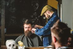 Hipster client getting haircut. Haircut concept. Barber styling hair of brutal bearded client with clipper. Barber with. Hair clipper works on hairstyle for men stock photos