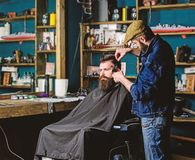 Hipster client getting haircut. Haircut concept. Barber with hair clipper works on hairstyle for man with beard. Hipster client getting haircut. Haircut concept royalty free stock images