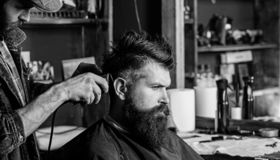 Hipster client getting haircut. Haircut concept. Barber styling hair of bearded client with comb and clipper. Barber. With hair clipper works on hairstyle for royalty free stock photos