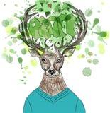 Hipster deer  Stock Photo