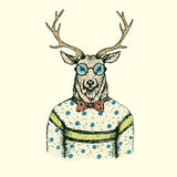 Hipster deer like a man dressed in the blouse Royalty Free Stock Image