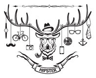 Hipster deer Stock Photos