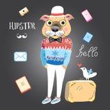 Hipster dog Stock Photos