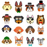 Hipster dogs faces set Royalty Free Stock Photos