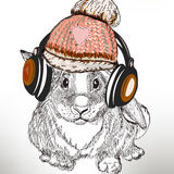 Hipster fashion illustration with rabbit listen music in headphone Royalty Free Stock Photo