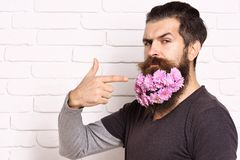 Hipster with flowers in beard Royalty Free Stock Photography