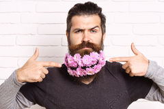 Hipster with flowers in beard Royalty Free Stock Photo