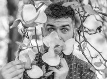 Hipster geniet van aroma van bloesem Parfumeurconcept Gebaarde mens met de verse bloei van kapselsnuifjes van magnolia Mens die m royalty-vrije stock fotografie