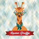 Hipster giraffe poster Royalty Free Stock Images