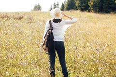 Hipster girl with backpack traveling in sunny mountains, walking in sunny wildflower meadow. Stylish woman in hat exploring and royalty free stock photography
