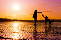 Hipster girl playing with dog at a beach during sunset. Silhouettes with vibrant colours, with copy space Royalty Free Stock Photos