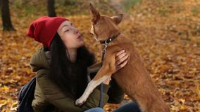Hipster girl playing with her dog on autumn day stock footage
