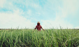 Hipster girl walking on summer field Stock Photography