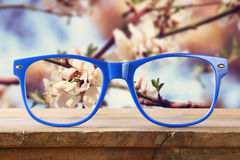 Hipster glasses on a wooden table in front of cherry tree Royalty Free Stock Photo