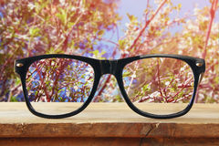 Hipster glasses on a wooden table in front of cherry tree Royalty Free Stock Photos