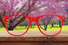 hipster glazen op een houten lijst voor kersenboom stock foto
