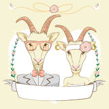 Hipster Goat Save The Date Royalty Free Stock Photo