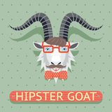 Hipster goat sign Royalty Free Stock Images