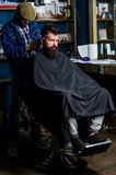 Hipster hairstyle concept. Hipster client getting haircut. Barber with hair clipper works on haircut of bearded guy. Barbershop background. Barber with clipper royalty free stock images