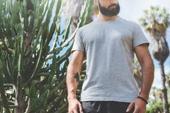 Hipster handsome male model with beard wearing gray blank t-shirt and a black snapback cap with space for your logo or. Design in casual urban style.Green palm Stock Photography