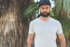 Hipster handsome male model with beard wearing gray blank t-shirt and a black snapback cap with space for your logo or. Design in casual urban style.Green palm Royalty Free Stock Image