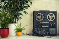 Hipster - hippie room with a dusty magnetophone and plants Royalty Free Stock Photos