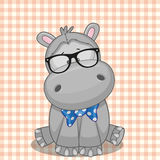 Hipster Hippo Stock Image