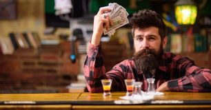 Hipster holds money, counting cash to buy more alcohol. Man with drunk face sit alone at bar counter. Guy spend leisure in bar drinking cocktail, defocused royalty free stock photos